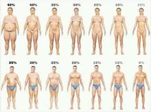 気にするべきは体重よりも体脂肪。