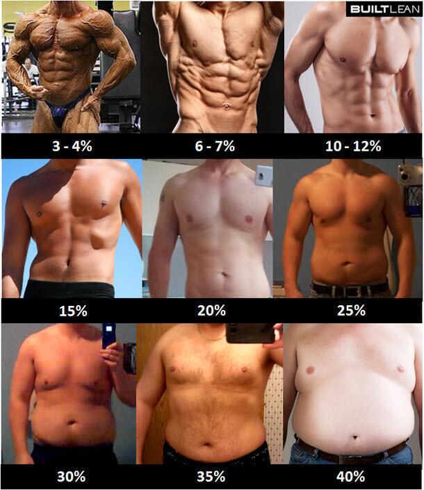 あなたの体脂肪率はどれ?~筋トレのイメージトレーニング~