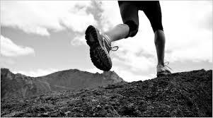 有酸素運動と筋トレのバランス